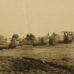 Fotografia della vita del campo di prigionia che ritrae un trasporto di materiali