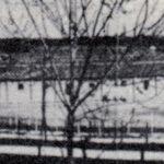Il campo di Fossoli, per gentile concessione della Fondazione Fossoli