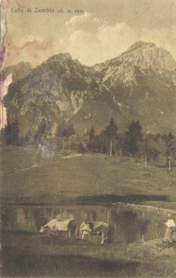 Veduta dell Colle di Zambla in una cartolina postale